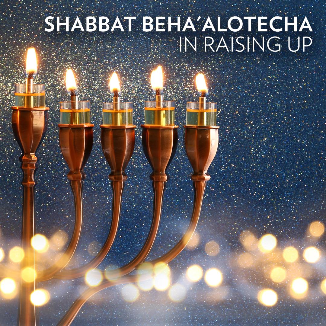 Shabbat at WJC ~ June 1st-2nd