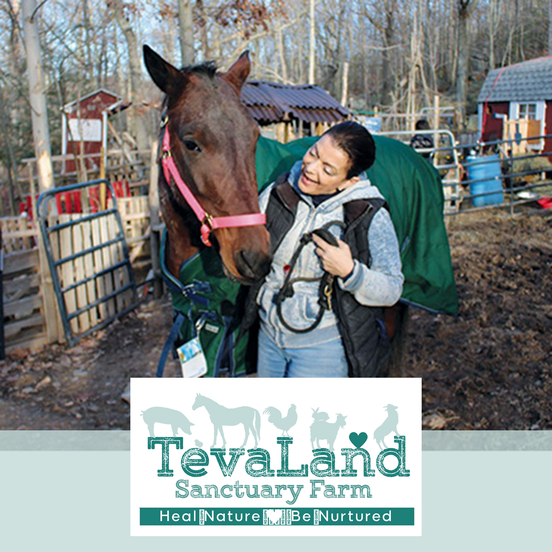 Tevaland: Creating Connections for Animals
